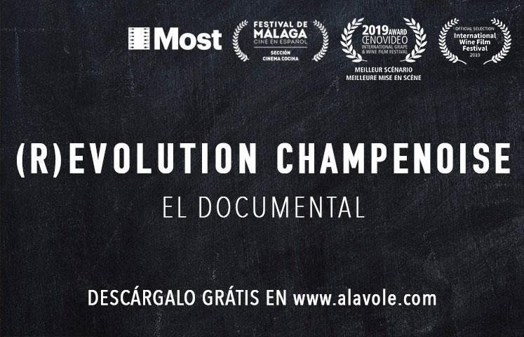 banner Documental